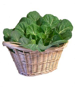 Collard greens in a basket