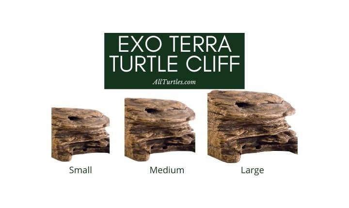 Exo Terra Turtle Cliff Review