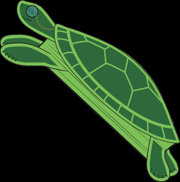 Hardback turtle