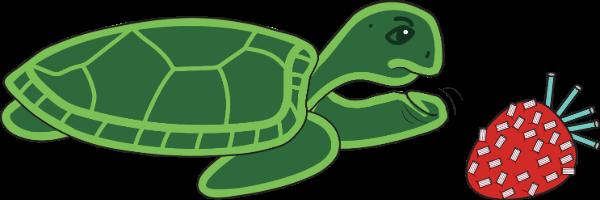 sea turtle allergic to Strawberry