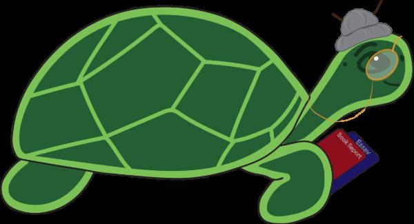 Mrs Tortoise