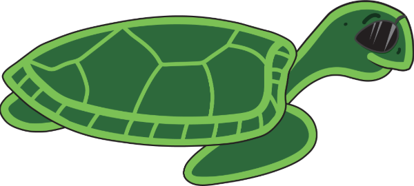 can't sea turtle