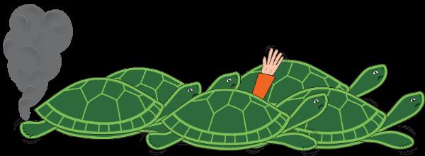 turtle stampede
