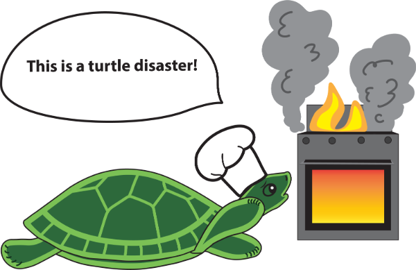 A Turtle disaster