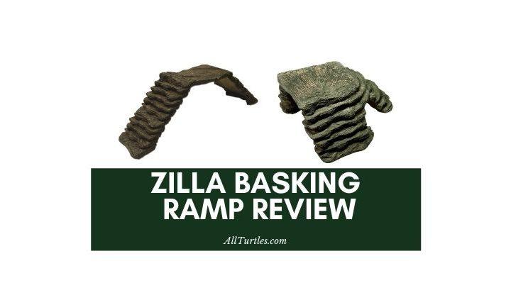 Zilla Basking Ramp Review