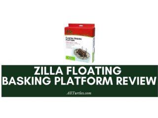 Zilla Floating Basking Platform Review