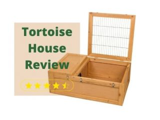 Zoo Med Tortoise House Review